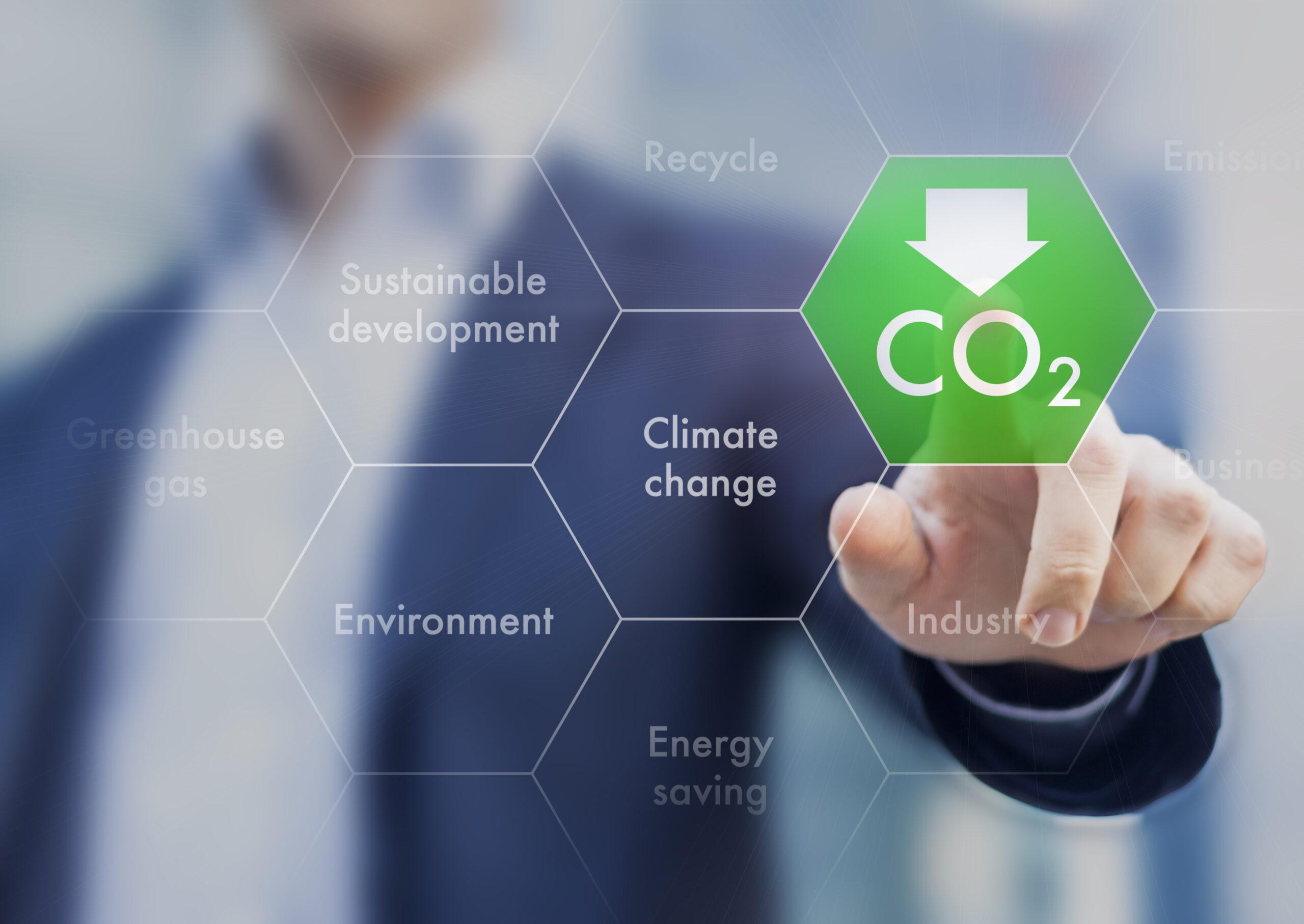 crecimiento empresarial sostenible